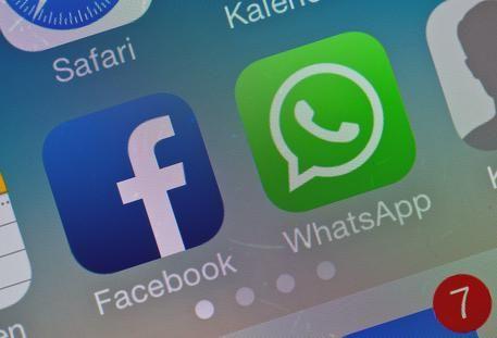 WhatsApp a quota 500 milioni utenti Ogni giorno condivisi 700 milioni foto e 100 milioni video (foto: ANSA)