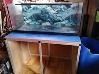 160 Liter Aquarium 100 x 40 x40 cm Set