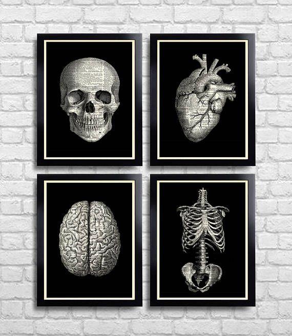 Anatomische instellen anatomie Print Set van 4 medische Wall