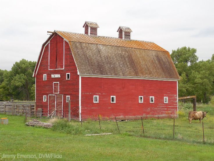 240 best one day the lone tree artist 39 s retreat images for Barn renovation