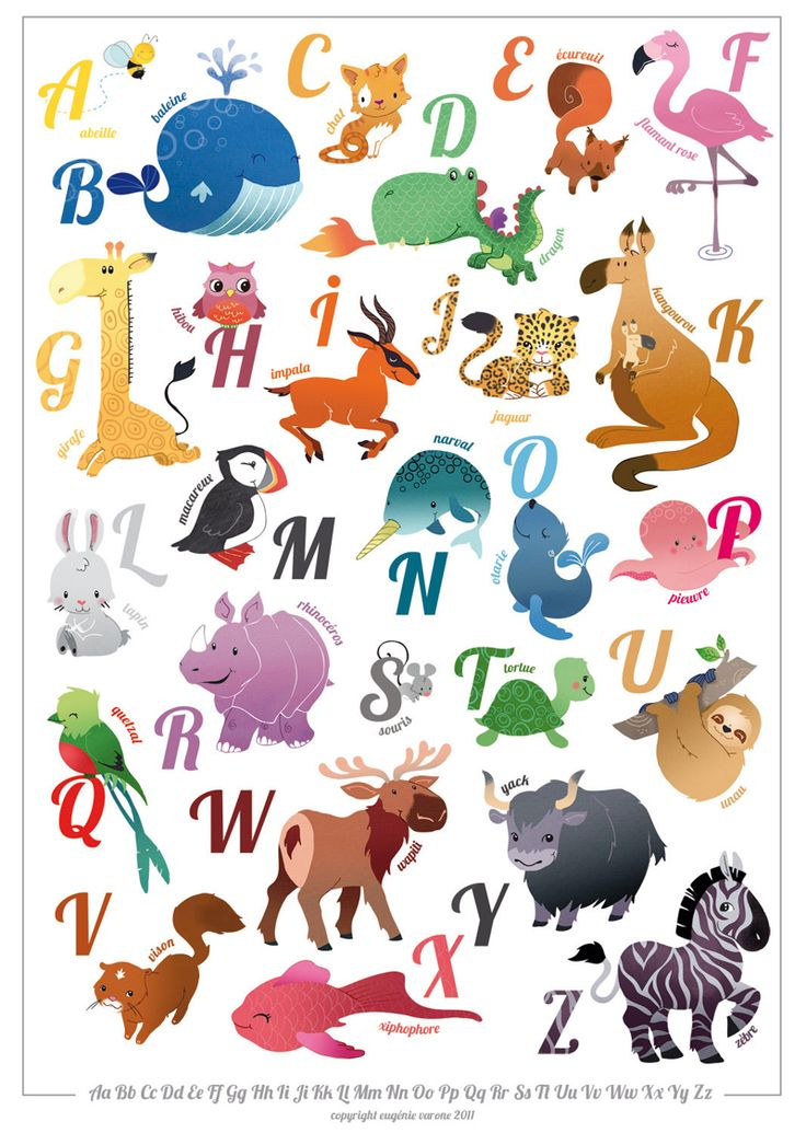 alphabetcrazy how in different languages they have different animals for their alphabet