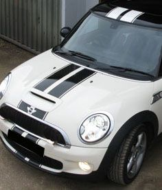 Mini Cooper Viper Racing Rally Stripes 2 color with pin stripes - Click Image to Close