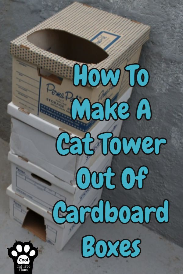 How To Make A Cat Tower Out Of Cardboard Boxes Cardboard