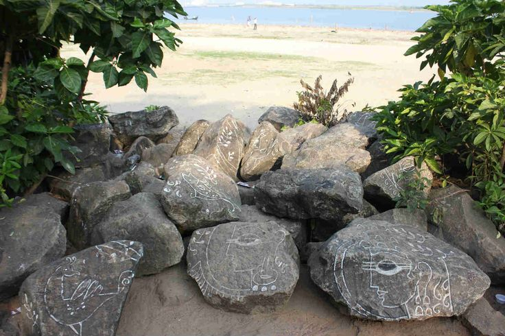 Kochi is literally an open-air gallery where beachside boulders and trees are reclaimed as artworks. Photo: Priya Ganapathy