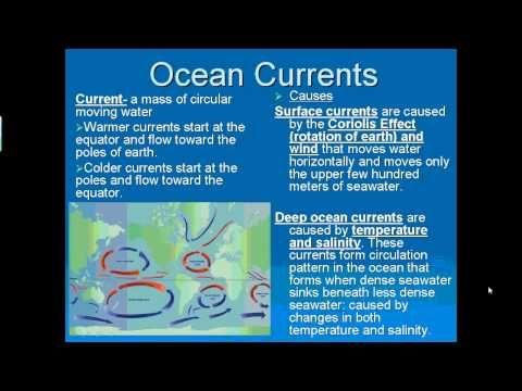 33 best oceans images on Pinterest | Ocean unit, Ocean activities ...