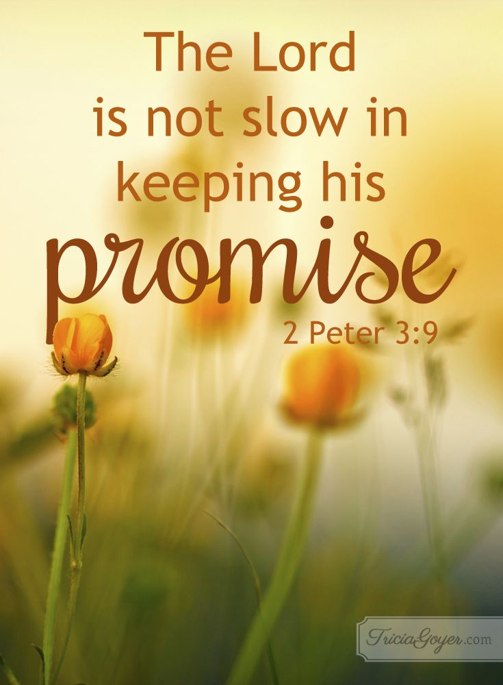 2 Peter 3:9 (NKJV) ~~ The Lord is not slack concerning His promise, as some count slackness, but is longsuffering toward us, not willing that any should perish but that all should come to repentance. ~~ Keeping His Promise | 2 Peter 3:9
