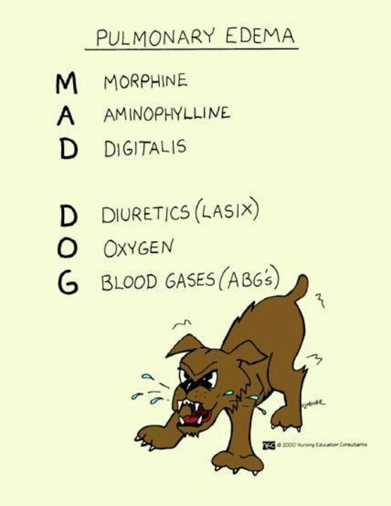 Pulmonary edema = mad dog