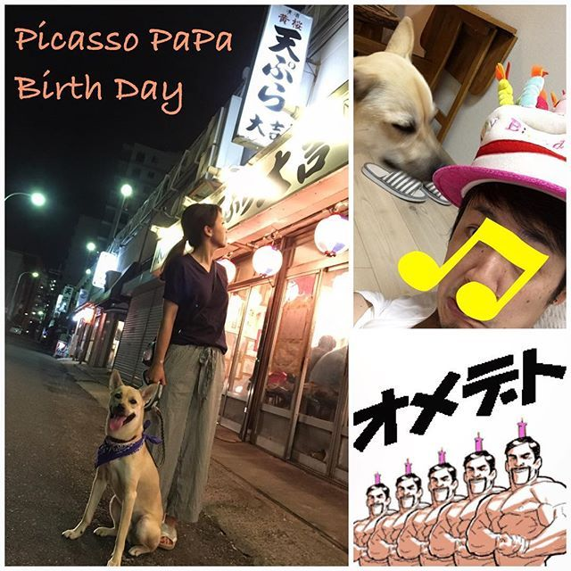 久々にピカソお父ちゃんが投稿です。. 7月4日はお父ちゃんの誕生日でした〜〜〜〜!!! がっ!!. あいにくの大雨で一日中ひきこもり、、、おかあちゃんのアイデアで夜中12時からオープンする市場の天ぷら屋さんに3人でいってきましたー!!!. ピカは車内でお留守番ですがw. 美味しい夜食でございましたー!. . #picasso #ピカソ #犬 #dog #愛犬 #わんこ #雑種 #雑種犬 #mixdog #中型犬 #保護犬 #2歳 #溺愛 #親バカ #愛犬部 #わんぱく部 #わんこ時計 #犬のいる暮らし #わんこのいる暮らし #いぬすたぐらむ #pecoいぬ部 #pecon #いぬばか部 #いぬら部 #pet #instadog #dogstagram #todayswanko #west_dog_japan