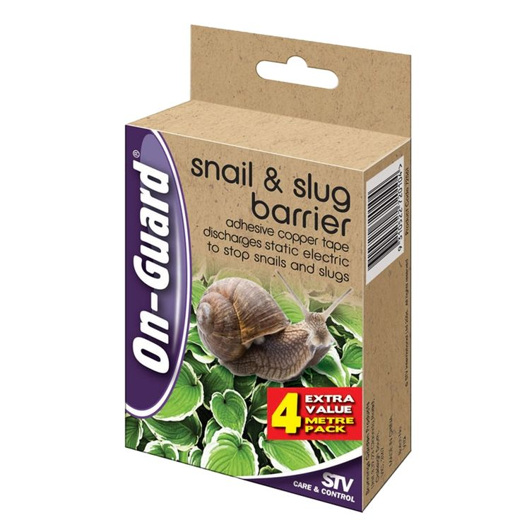 Best Way To Get Rid Of Slugs In The Kitchen