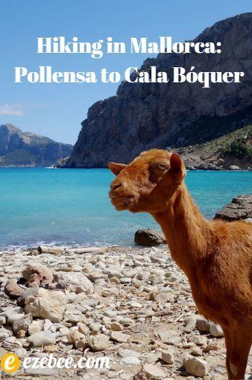 Hiking in Mallorca: Pollensa to Cala Bóquer