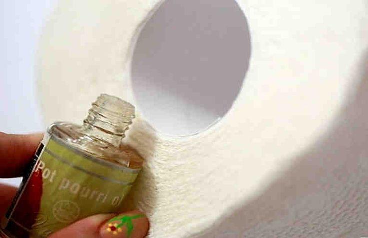 Las 25 mejores ideas sobre aromatizador de toallas en - Mejor ambientador casa ...