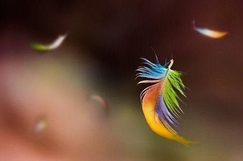 Когда человеку кажется, что всё идёт наперекосяк, в его жизнь пытается войти нечто чудесное.  © Далай Лама