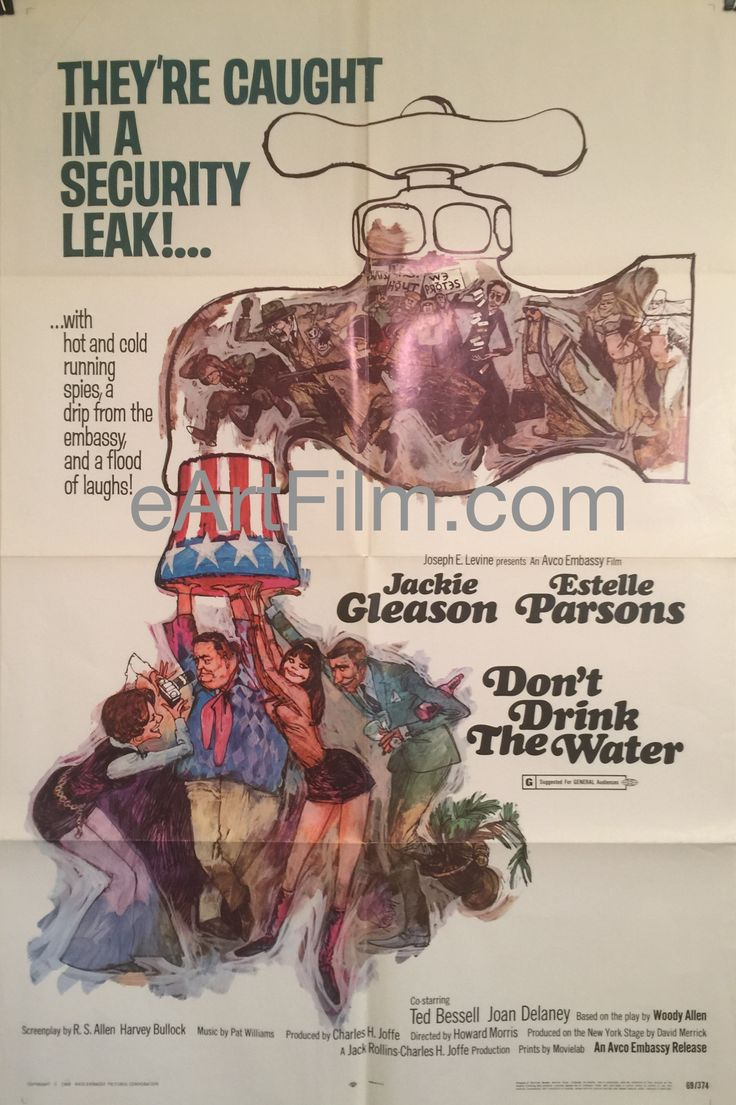 Don't Drink The Water-Woody Allen-Jackie Gleason-Estelle Parsons-1969-27x41