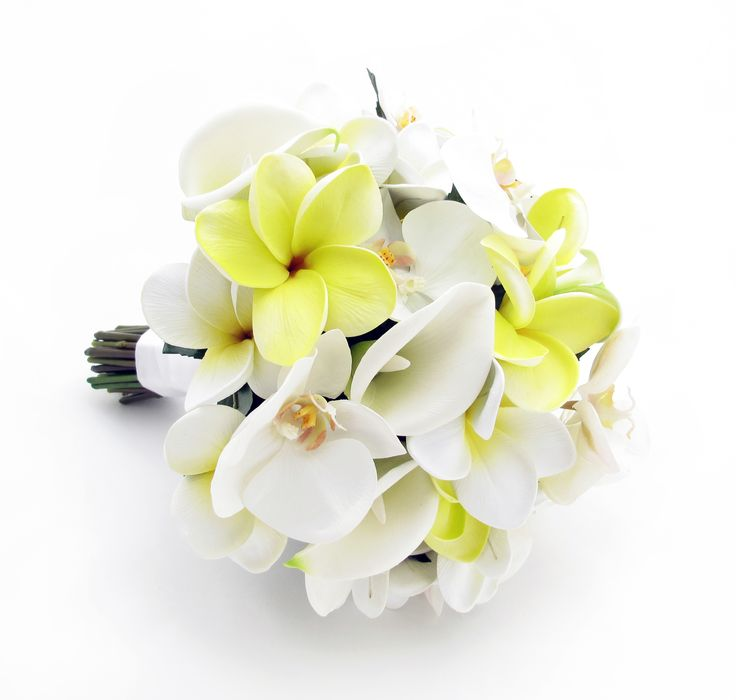 Orchid Wedding Set / A complete matching set of beautiful phalaenopsis orchids with a touch of sunny yellow. / Phalaenopsis, frangipanis and calla lilies / Bridal Bouquet (pictured) - Diameter: 23cm Height: 28cm One Bridesmaid Bouquet - Diameter: 18cm Height: 23cm Two Corsages and Four Buttonholes. RRP $282, sale price is only $85. See extra pics at: http://www.pinterest.com/pin/151926187405778805/
