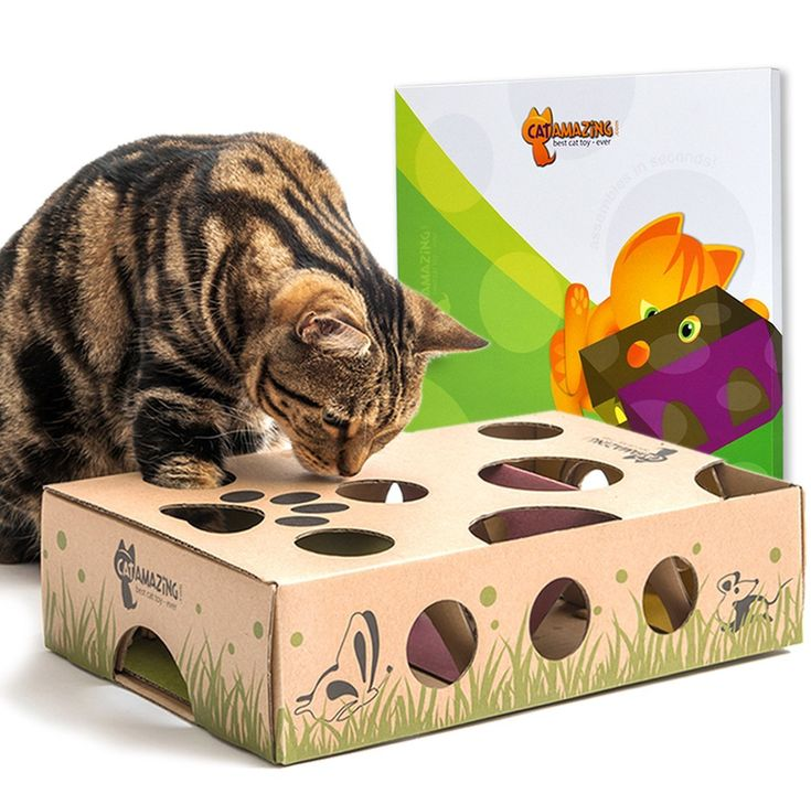 442 Best Cat Repellents And Training Aids Images On