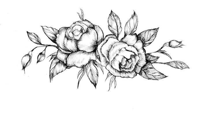 1001 Ideas Sobre Como Dibujar Una Rosa Paso A Paso Dibujo De Rosa Facil Dibujos De Rosas Como Dibujar Rosas