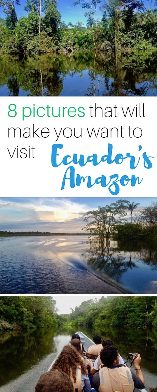 Here are 8 pictures that will make you want to visit Ecuador's Amazon