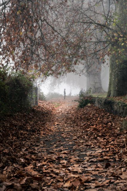 Foggy day in Kingston Upon Thames (GB)