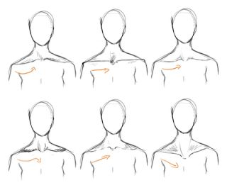 28 best drawing the neck and shoulders images on pinterest to draw how to draw neck collar bone ccuart Gallery