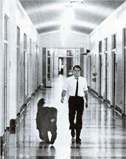 Love this old pic. RFK and his Newfie, Buster. A Newfie roaming the halls of the Senate. As it should be.