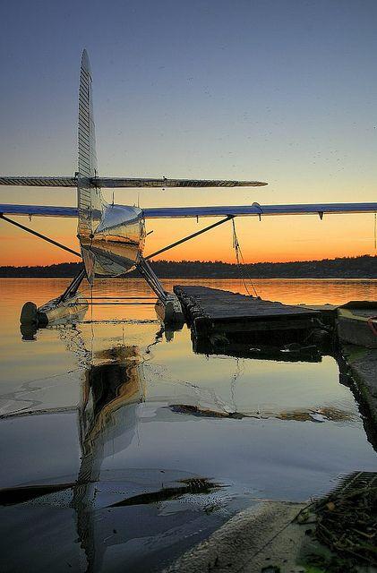 Kenmore Air Beaver at rest