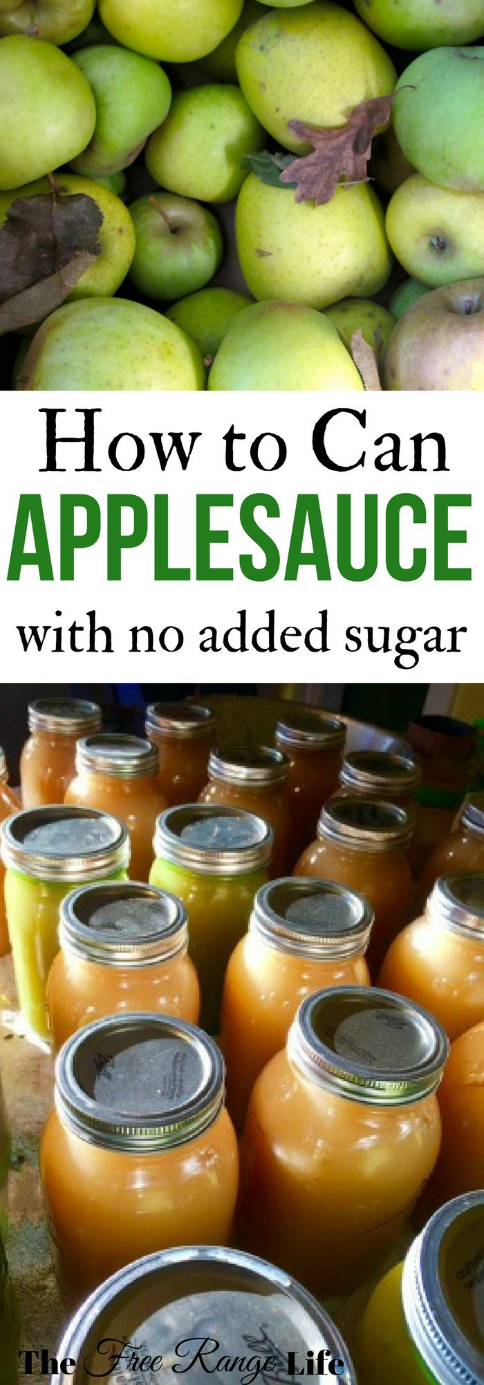Combine multiple apple varieties into amazing homemade applesauce- no sugar needed! It is simple to make and can and delicious!