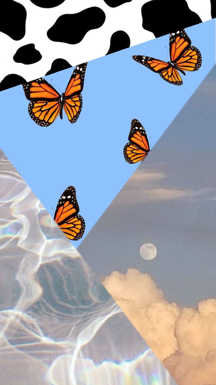 cloudy butterfly cow print water wallpaper