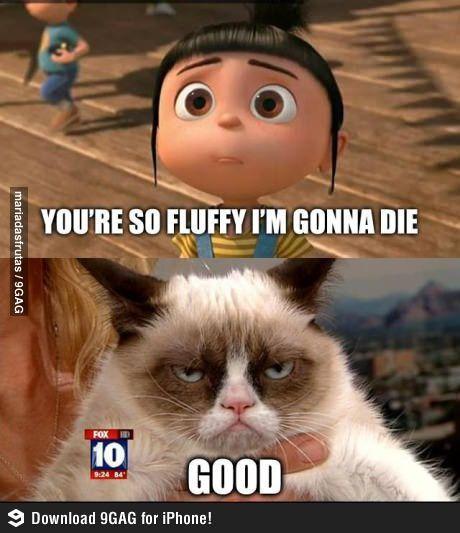 Grumpy Cat Valentines Day Nobody Loves You
