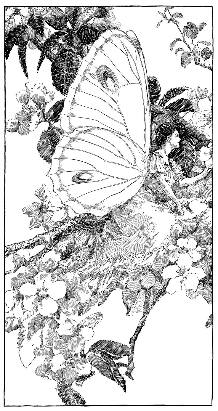 Vintage clipart butterfly printable fairy graphics for Butterfly fairy coloring pages