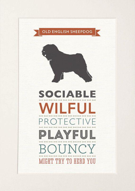 Old English Sheepdog Breed Traits Print by WellBredDesign on Etsy