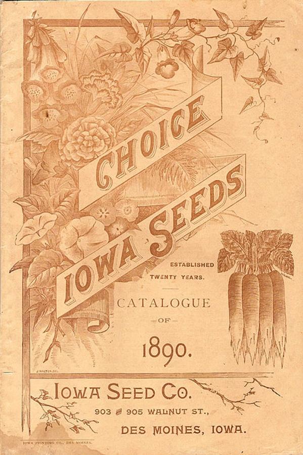Vintage Iowa Poster #vintage #typography