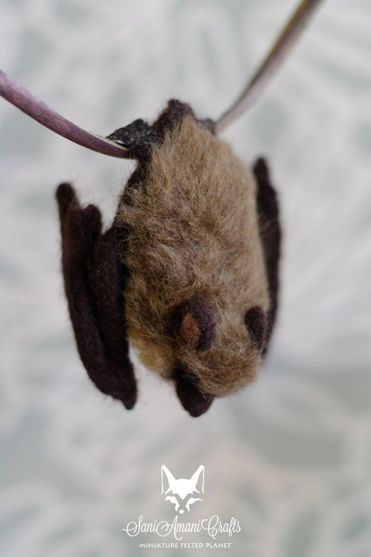 79 best Fledermaus images on Pinterest | Bats, Stuffed toys and Day ...