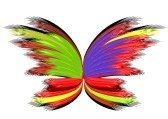 Abstract : Abstract butterfly