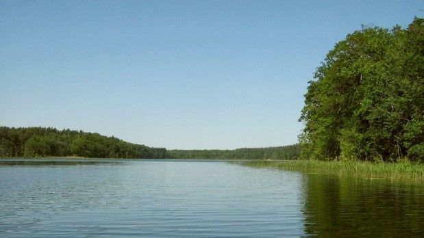 Mühlensee (Jabel) - The Mühlensee in Jabel is a small water of about 35 acres with a good stock of big carp. Past, the lake for carp intensive economy has been used sinc... Check more at http://carpfishinglakes.com/item/muhlensee-jabel/