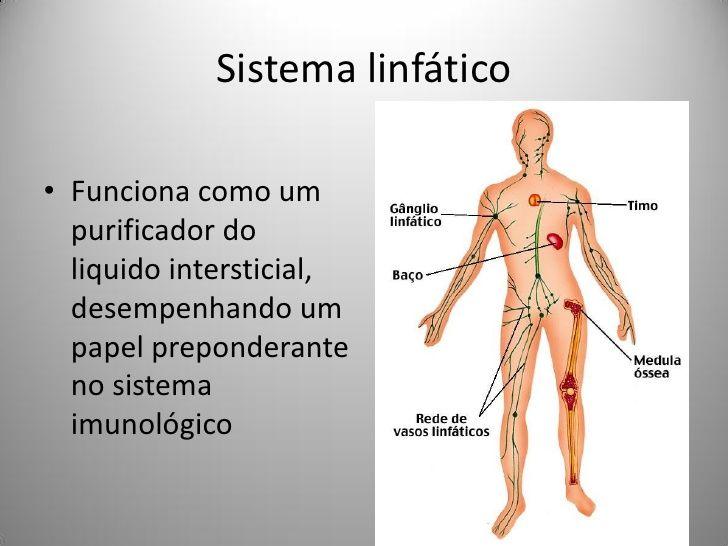 Drenagem Linfatica Manual Copia Linfatica Drenagem Massagem