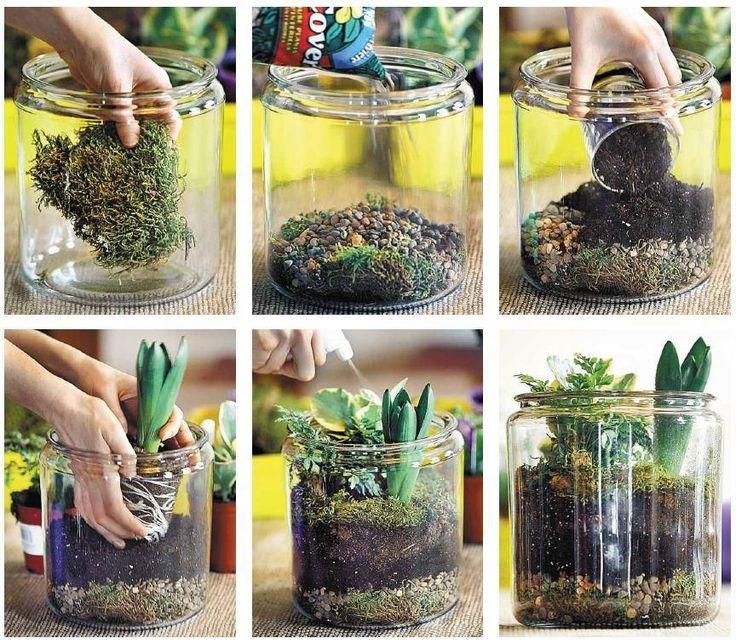 mini jardim em garrafas: mini jardim! Veja mais em nosso blog:http://dicasdacasa.com/diy-mini