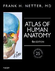 Want to learn human gross anatomy? If yes, then download netter atlas of human anatomy pdf and look for every structure while reading anatomy book...