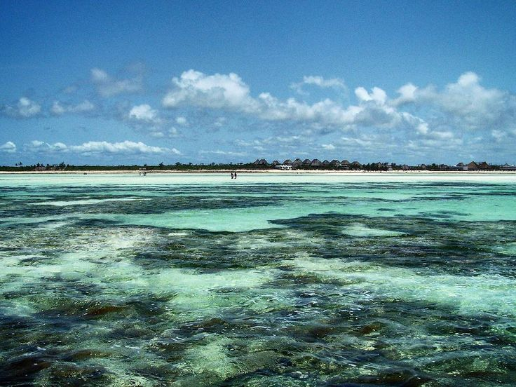 Amazing view of the shallow waters  covering coral reefs in Watamu Kenya.