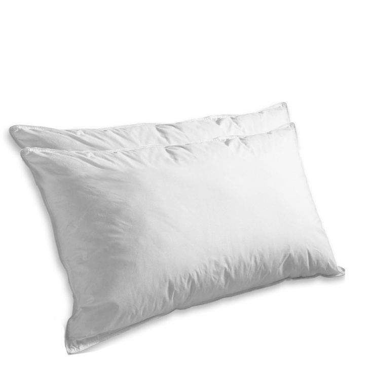 literary analysis of the feather pillow Author background plot summary literary analysis the significance of the title the feather pillow refers to the pillow that the main character alicia was sleeping on.