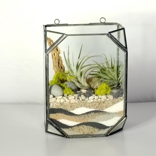 257 best Terrariums images on Pinterest | Succulents ...