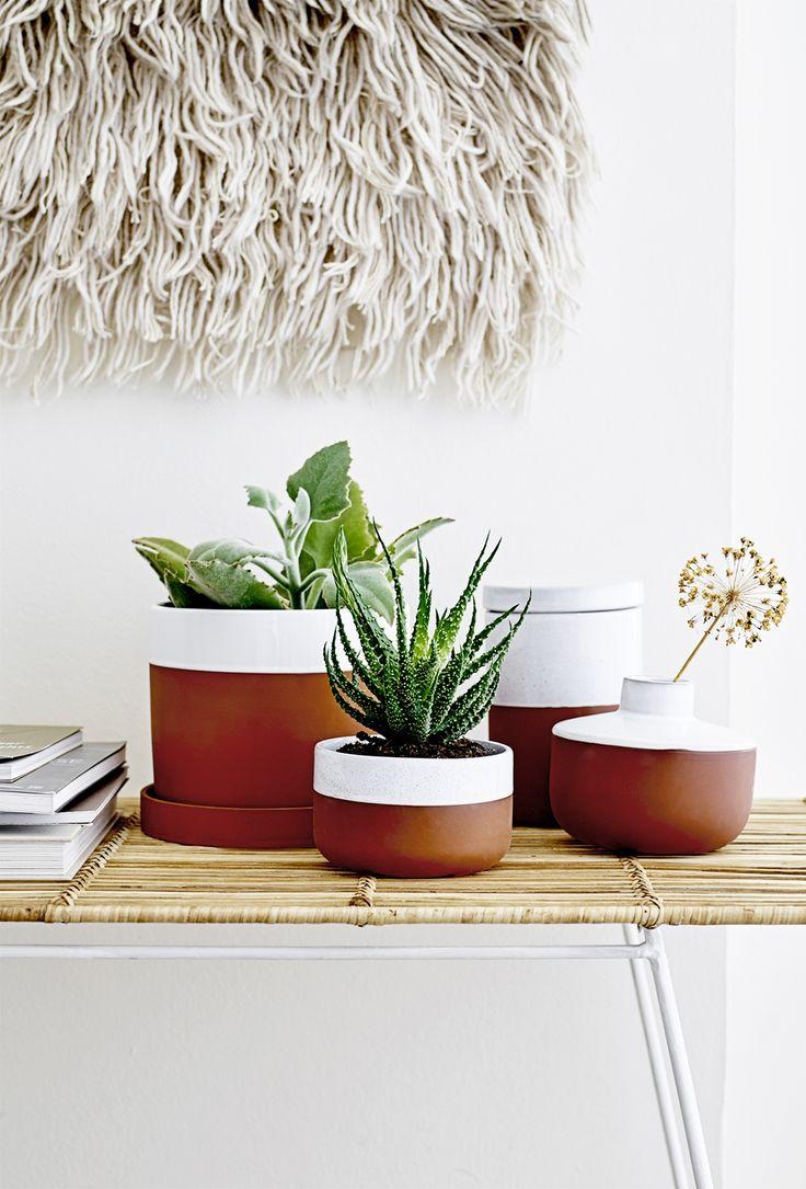 9 Great Ideas To Make Your Home Cozy For Winter #plants #urbanjungleblogger  #plant