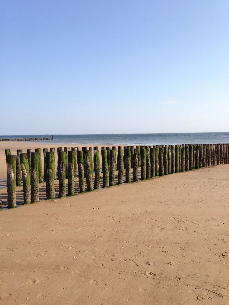 Zoutelande beach