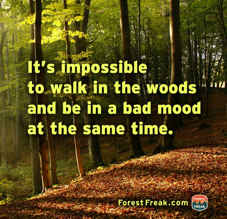 Forest Freak on Facebook. Great page!