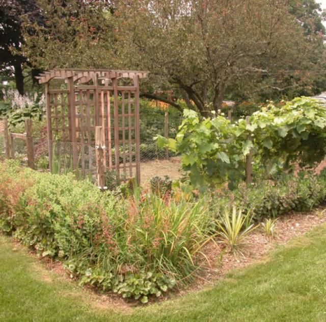 Vegetable Gardening Newbie? This Guide Has Tons of Information: Vegetable Garden Design