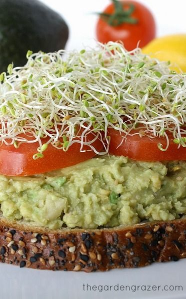 1000+ images about Vegetarian and Vegan Recipes on Pinterest