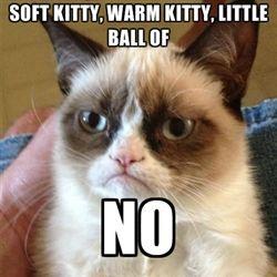 Sheldon and grumpy cat...