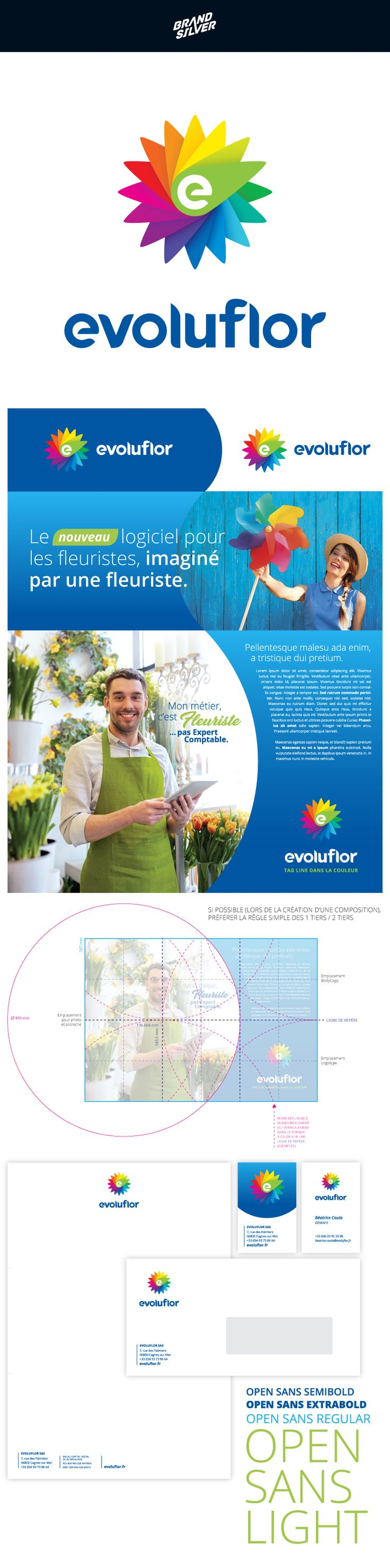 EVOLUFLOR #branding Accounting and management software.