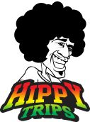 #Herbal #VaporizerPen by #HippyTrips for best results of vaping dry herbs. http://hippytrips.com/