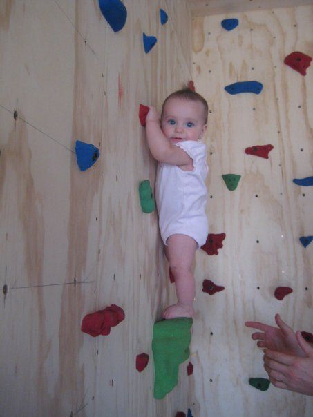 the 50 best images about baby rock climbing wall on