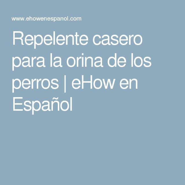 Repelente casero para la orina de los perros   eHow en Español